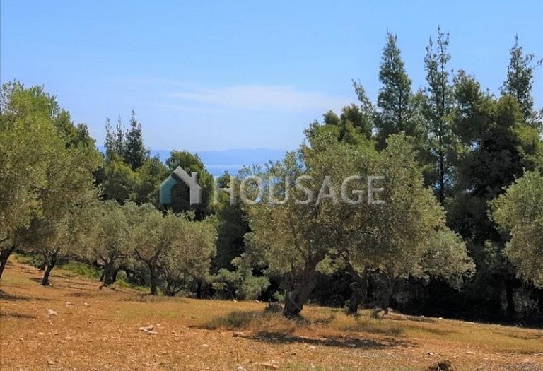 Land for sale in Agios Nikolaos, Sithonia, Greece - photo 2