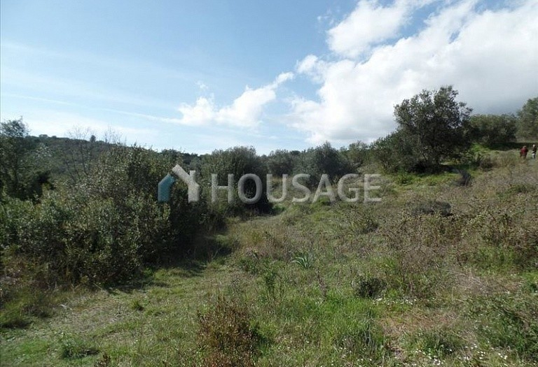 Land for sale in Kato Korakiana, Kerkira, Greece - photo 1
