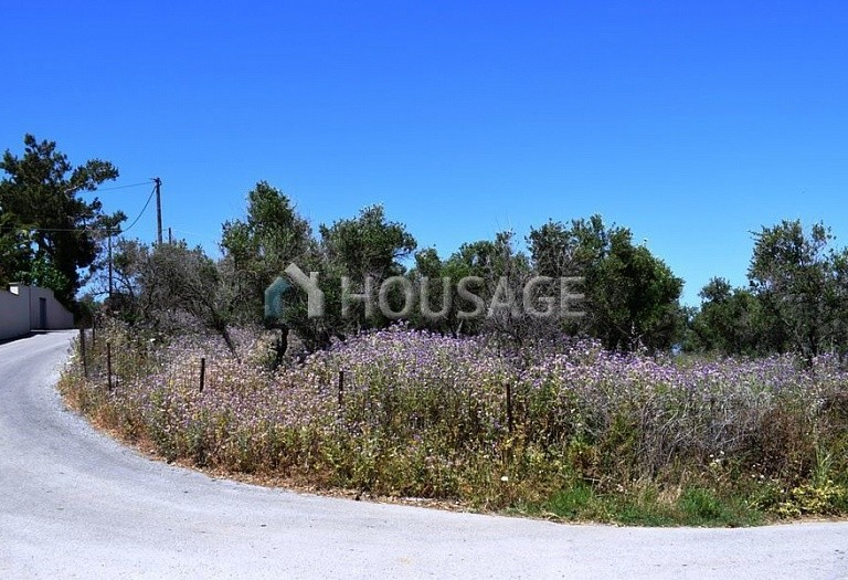 Land for sale in Rethymno, Rethymnon, Greece - photo 10
