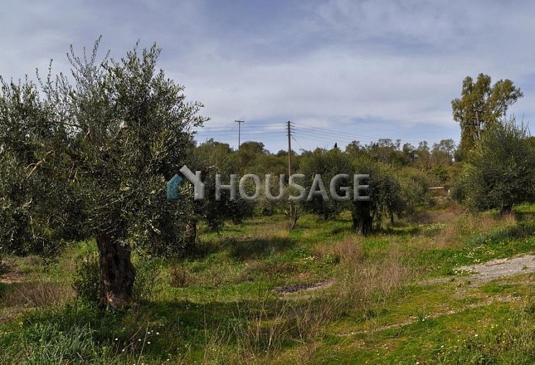 Land for sale in Agios Ioannis, Kerkira, Greece - photo 10