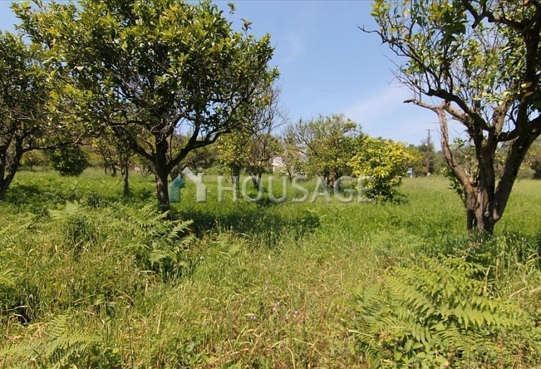 Land for sale in Astrakeri, Kerkira, Greece - photo 3