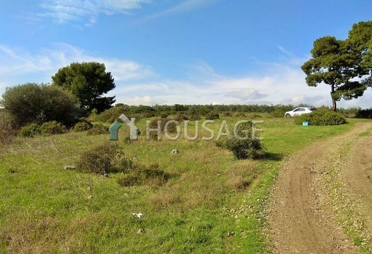 Land for sale in Ormylia, Sithonia, Greece - photo 5