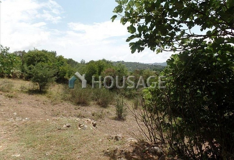 A house for sale in Poulades, Kerkira, Greece, 75 m² - photo 15