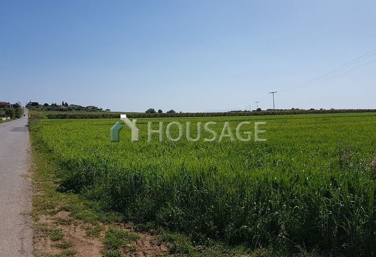 Land for sale in Lagkadas, Salonika, Greece - photo 6