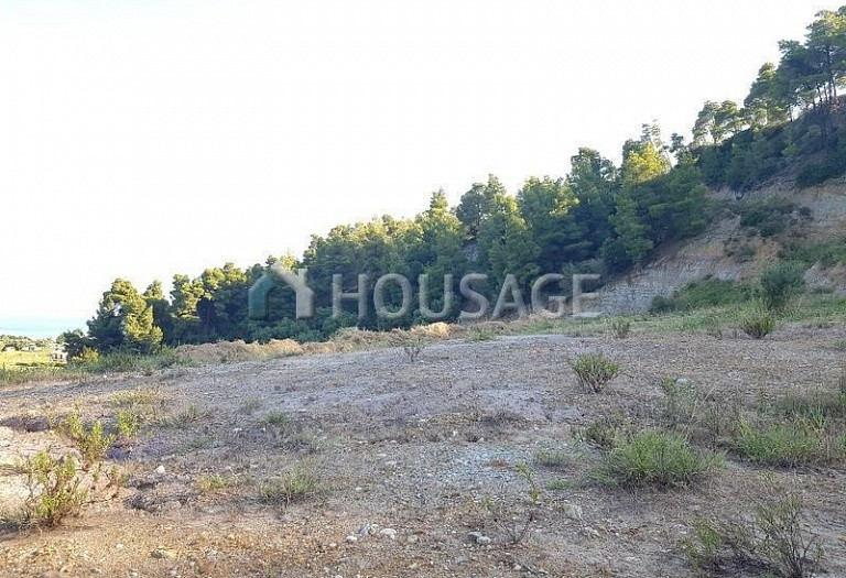 Land for sale in Nea Skioni, Kassandra, Greece - photo 7
