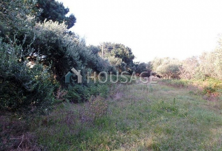 Land for sale in Chalikouna, Kerkira, Greece - photo 5