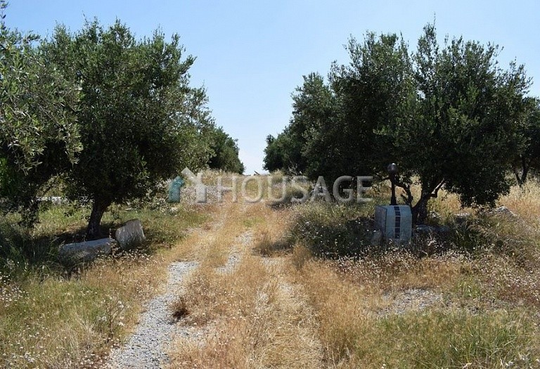 Land for sale in Kirianna, Rethymnon, Greece - photo 4
