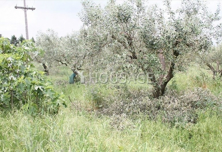Land for sale in Epanomi, Salonika, Greece - photo 3