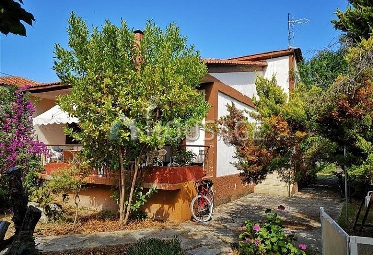 3 bed a house for sale in Pefkochori, Kassandra, Greece, 100 m² - photo 6