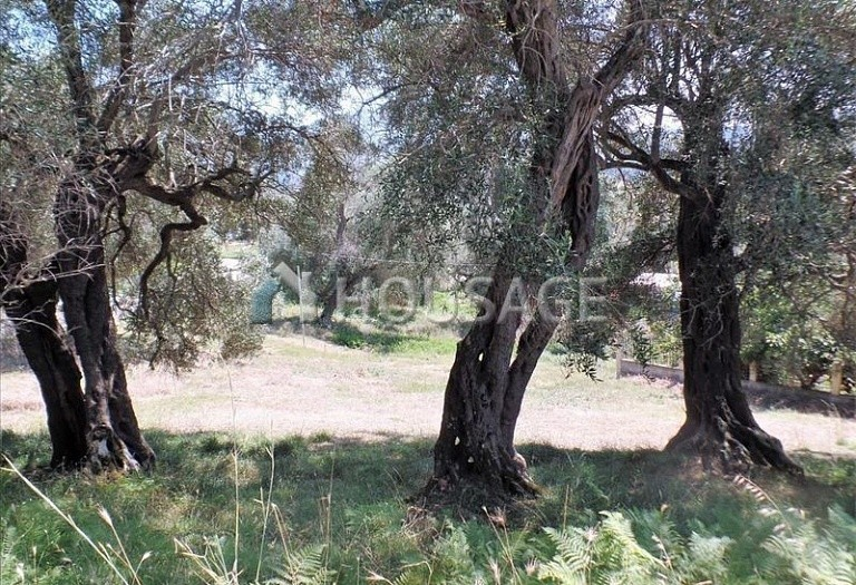 Land for sale in Kanali, Kerkira, Greece - photo 3