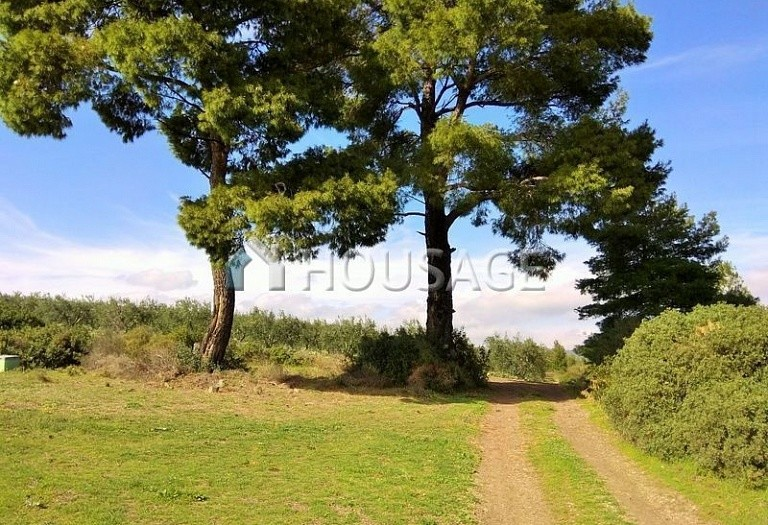 Land for sale in Ormylia, Sithonia, Greece - photo 1
