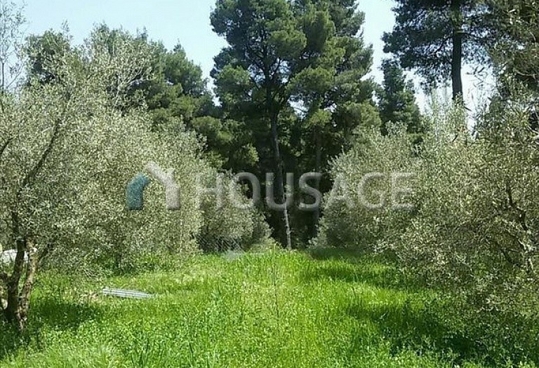 2 bed a house for sale in Paliouri, Kassandra, Greece, 80 m² - photo 9