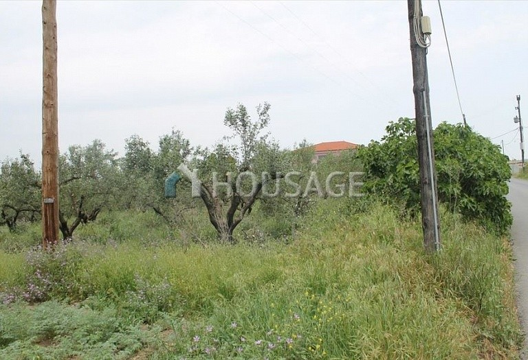 Land for sale in Epanomi, Salonika, Greece - photo 5