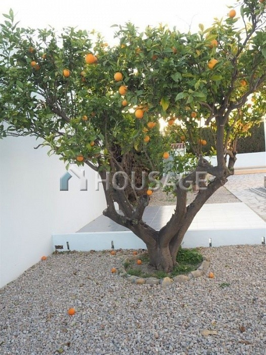 4 bed villa for sale in Alfaz del Pi, Spain, 150 m² - photo 12