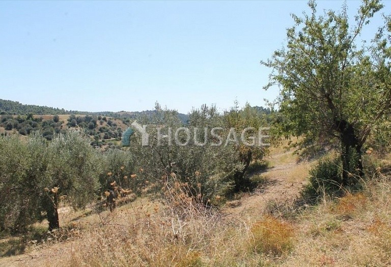 Land for sale in Paliouri, Kassandra, Greece - photo 4