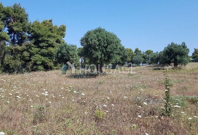 Land for sale in Posidi, Kassandra, Greece - photo 6