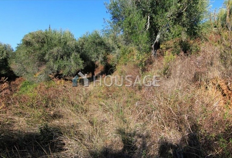 Land for sale in Viros, Kerkira, Greece - photo 3