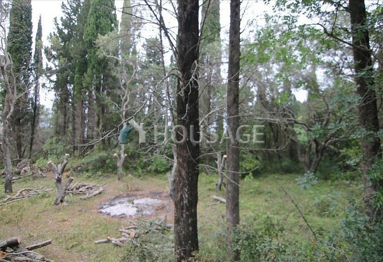 Land for sale in Gastouri, Kerkira, Greece - photo 7
