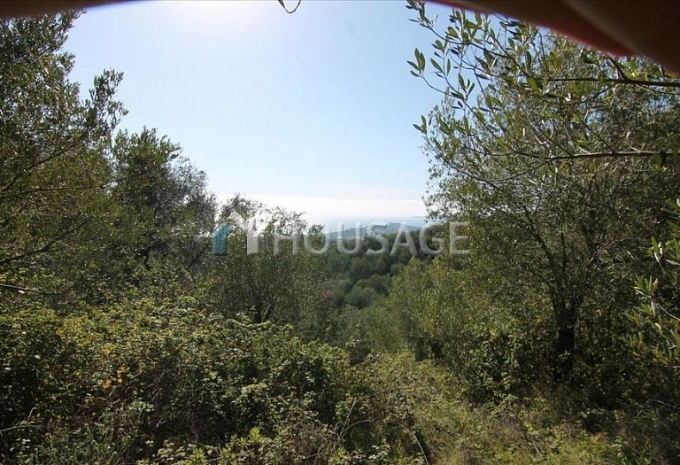 Land for sale in Barbati, Kerkira, Greece - photo 2