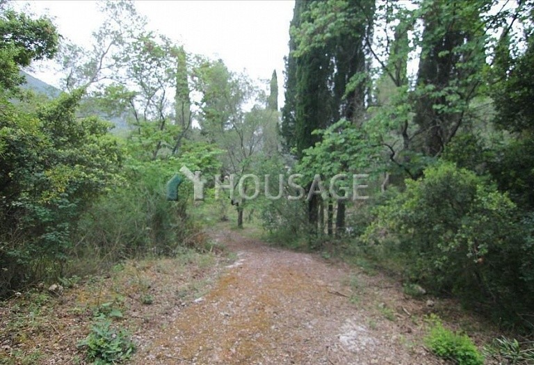 Land for sale in Gastouri, Kerkira, Greece - photo 5