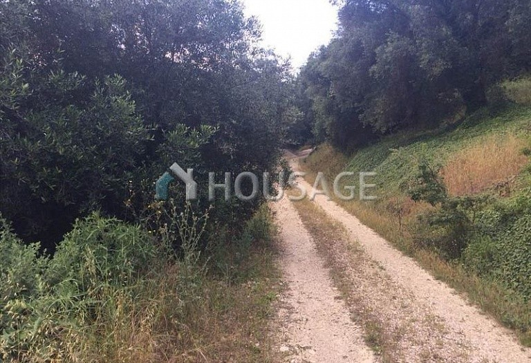 Land for sale in Arkadades, Kerkira, Greece - photo 3