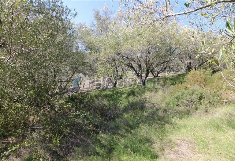 Land for sale in Magoulades, Kerkira, Greece - photo 3