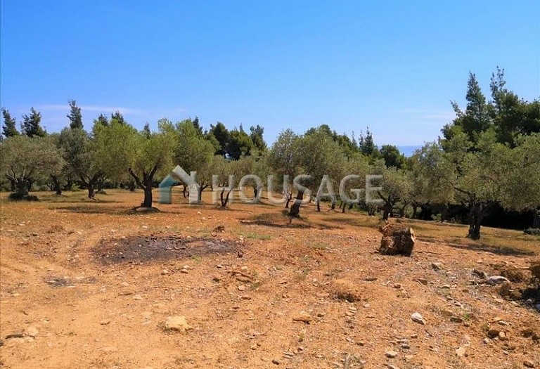 Land for sale in Agios Nikolaos, Sithonia, Greece - photo 4